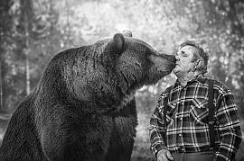 Подружиться с медведем